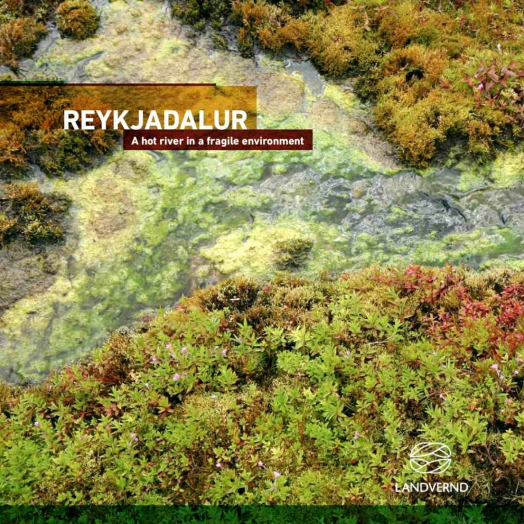 Reykjadalur is an unique site, where you can enjoy walks and natural bathing, landvernd.is