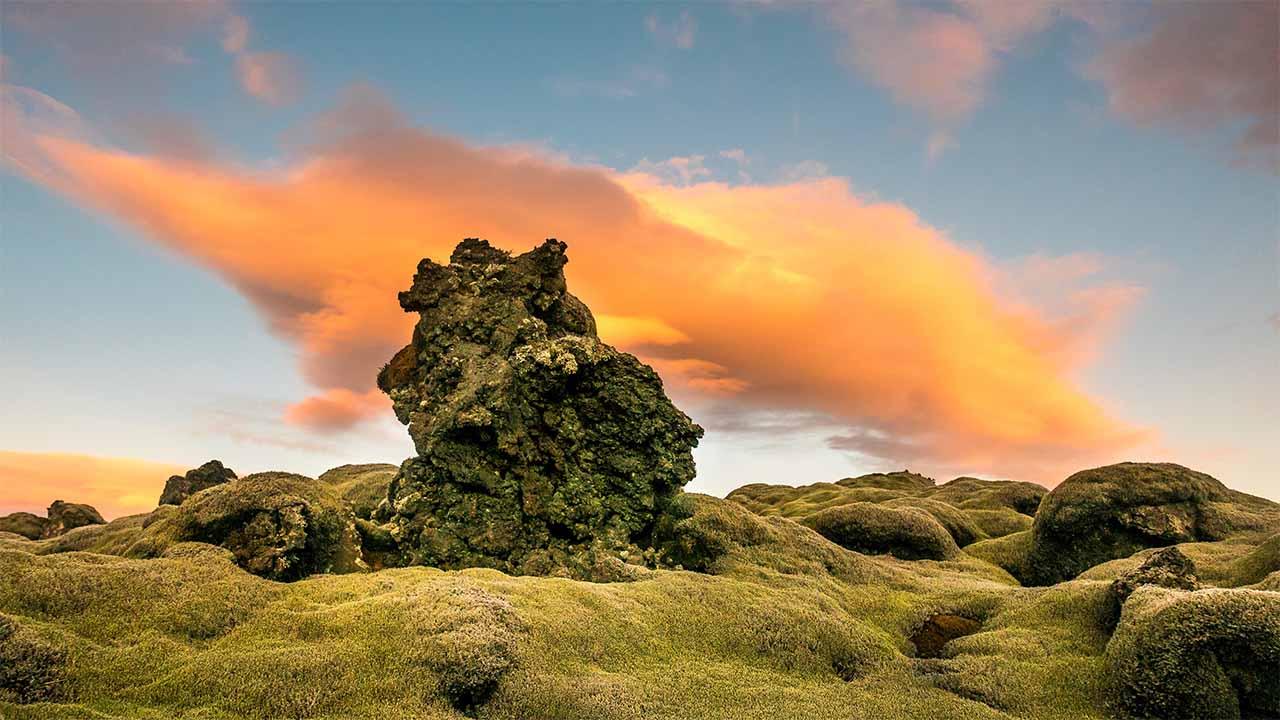 Mosi er verndaður með náttúruverndarlögum, landvernd.is
