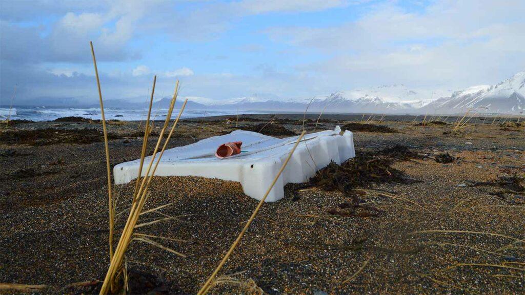 Gæta þarf að dýra- og fuglalífi við skipulagningu strandhreinsana, landvernd.is