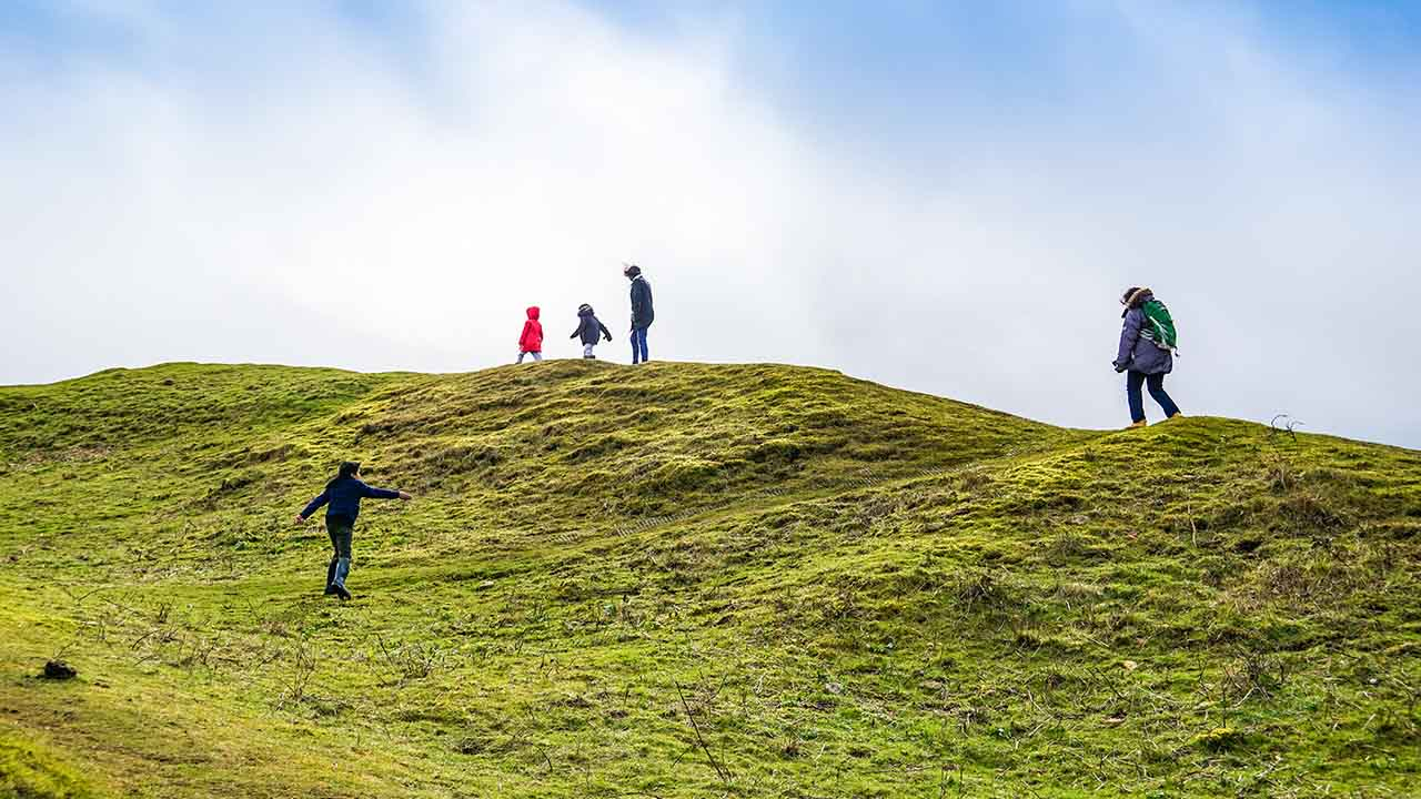 Vistheimt gengur út á að lækna skaddað land, landvernd.is