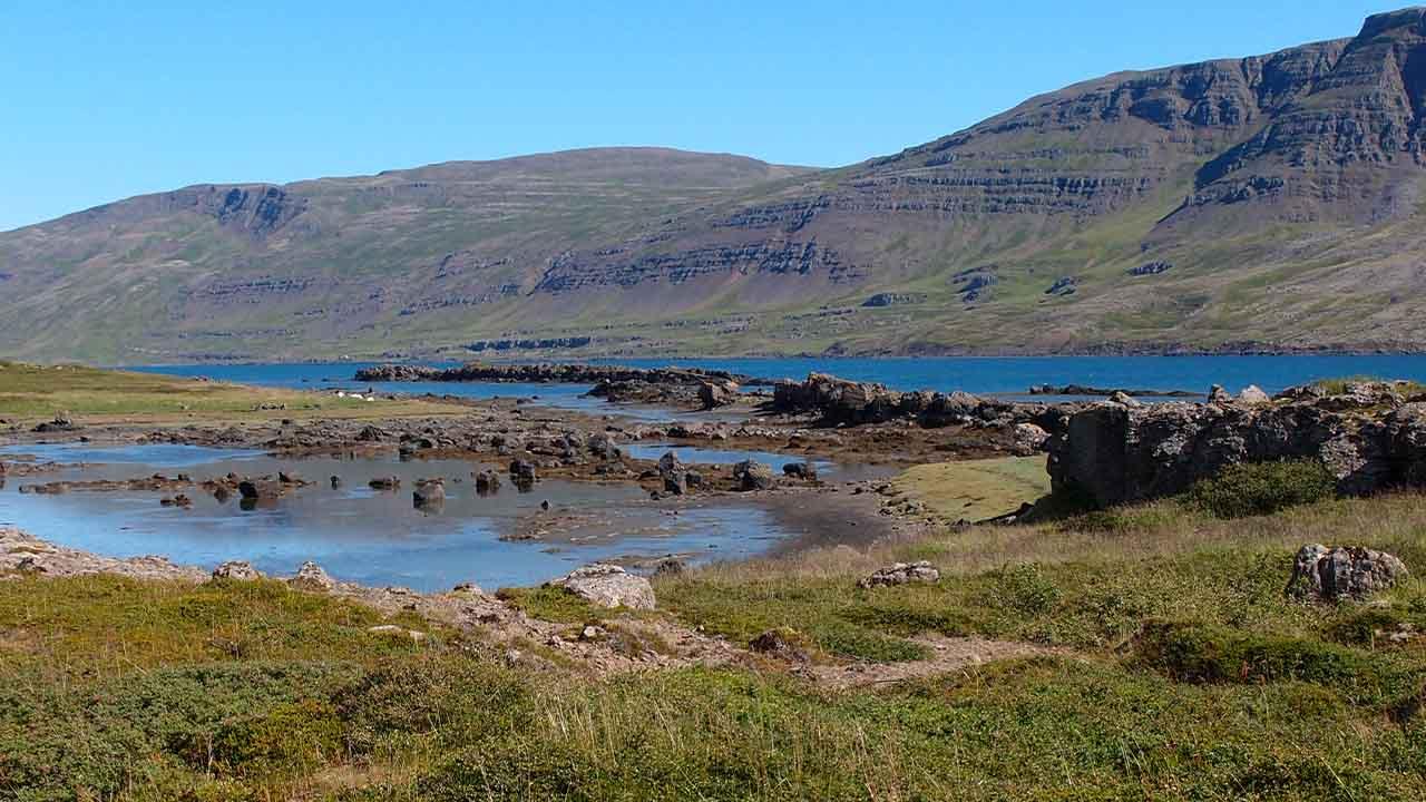 Landvernd kærir framkvæmdaleyfi vegna vegar um Teigsskóg til úrskurðanefndar umhverfis- og auðlindamála