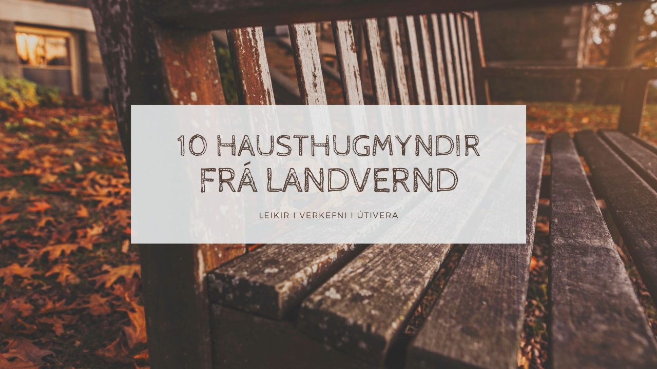 Haust hugmyndir frá Landvernd, leikir, verkefni og útivera, landvernd.is
