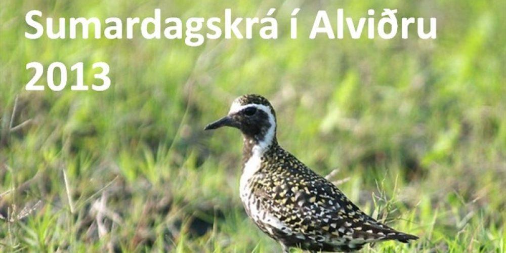 1_sumardagskra-i-alvidru-2013