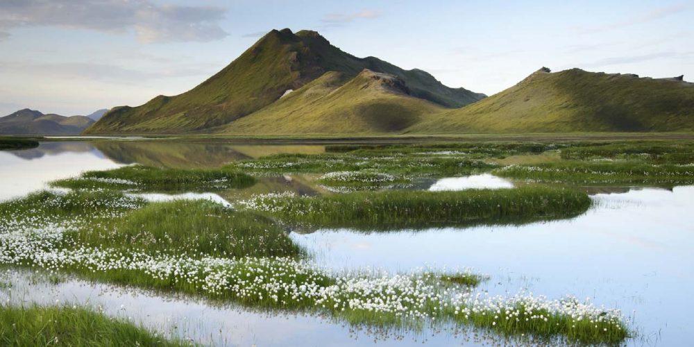 Kýlingar í Friðlandi að Fjallabaki, verndum hjarta landsins, höfnum virkjunum fyrir stóriðju, um 80% rafmagns á íslandi fer til stóriðju, landvernd.is