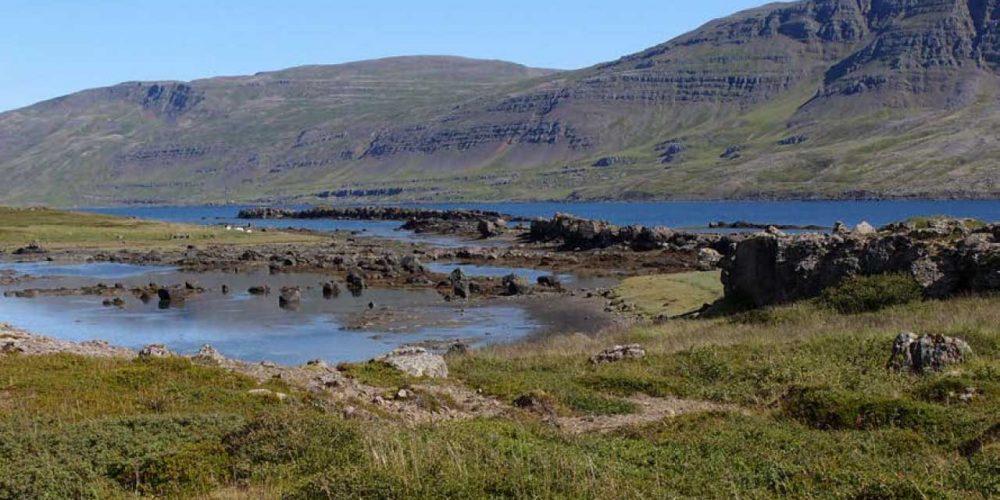 Teigskógur er einstakt svæði þar sem náttúrulegur birkiskógur tengir saman fjall og fjöru, landvernd.is