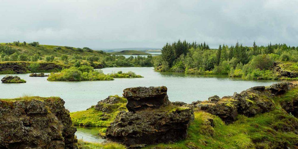 Lífríki Mývatns og Laxár er einstakt og ber að vernda, landvernd.is