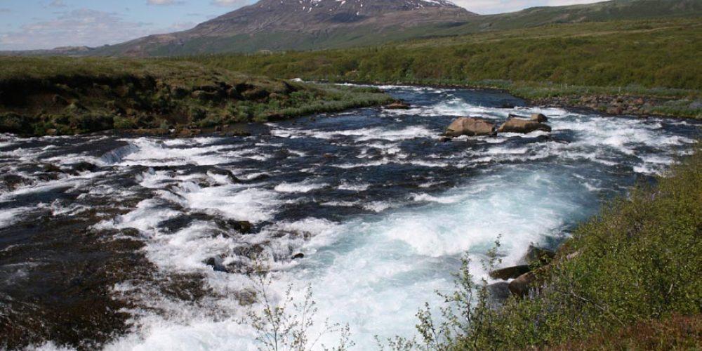 Stöðva verður hernaðinn gegn íslensku lindánum, Tungnafljót í Biskupstungum. Mynd: Magnús Jóhannsson, landvernd.is